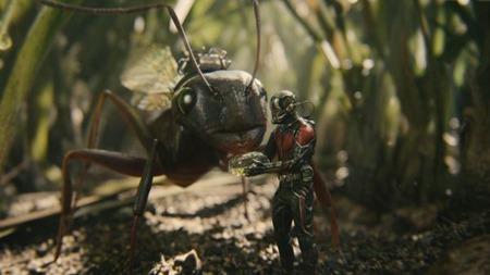 Ant-Man-873