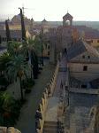 Alkazar w Kordobie o świcie, widok na Katedre