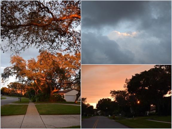 It feels like Fall1