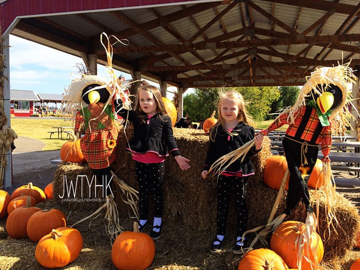 Pumpkin-Patch-Scarecrows