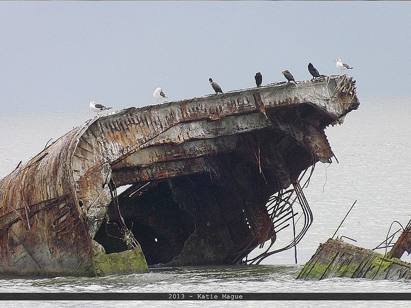 concrete-ships-11