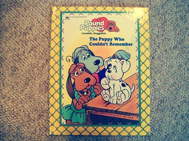 Pound Puppies The Puppy Who Couldn't Remember Front Side
