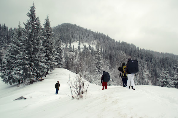 зима карпаты зимний поход снег