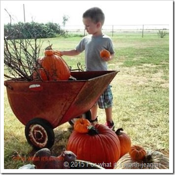 pumpkins stacked in antique cart