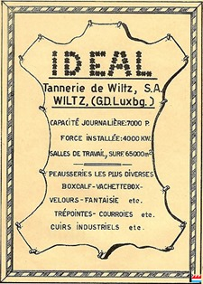 IDEAL-Wiltz-1951-Nic.-Witry-Leder-Schuh-und-Fuss-(1)