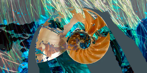 """The """"Nautilus 2"""" piece from the """"2013"""" collection"""