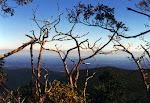 Near the summit of Stony Man Mountain, Shenandoah National Park in Virginia.
