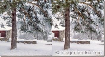 PhotoExif - Camera: Kodak Stereo, Film: Color, Comment: