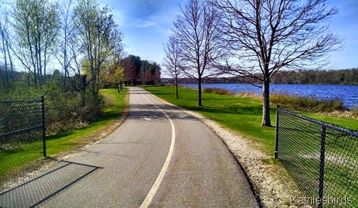 7. Androscoggin river path 5-8-15