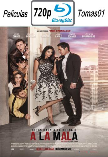 A la Mala (2015) [BRRip 720p/Español Latino]