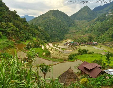 Bangaan Rice Terraces Banaue Ifugao 11
