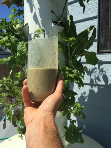 Grow organic green easy for smoothies and salads daily