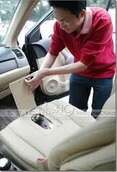 car_seat_toilet