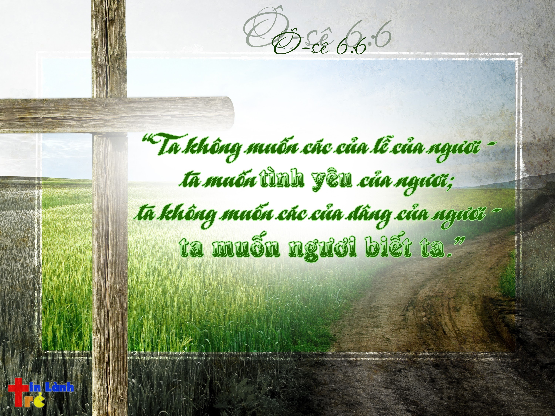 """""""Ta không muốn các của lễ của ngươi - ta muốn tình yêu của ngươi; ta không muốn các của dâng của ngươi - ta muốn ngươi biết ta."""" - Ô-sê 6:6"""