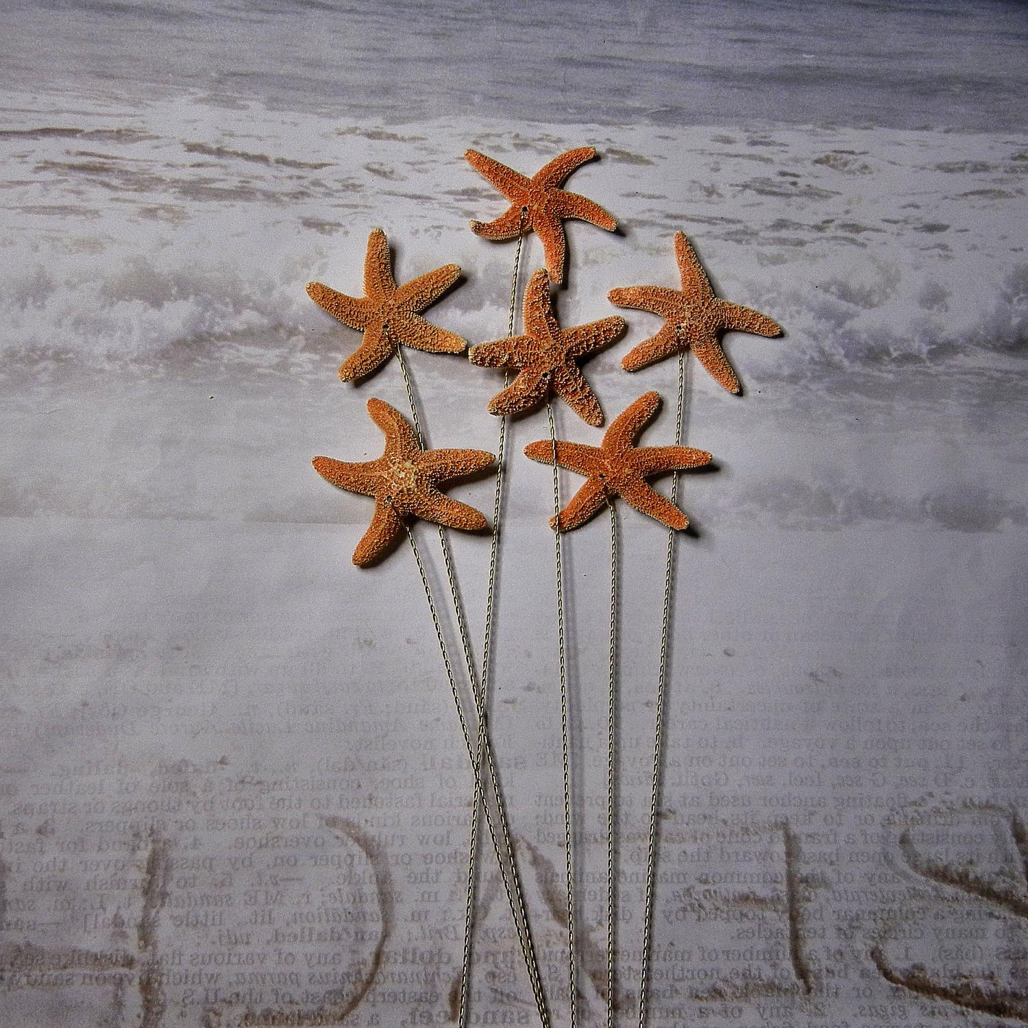 Wedding Decoration Starfish Wedding Decorations