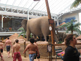 Having fun at Kalahari Water Park in OH 02192012u