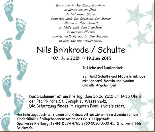 Traueranzeige Nils-001