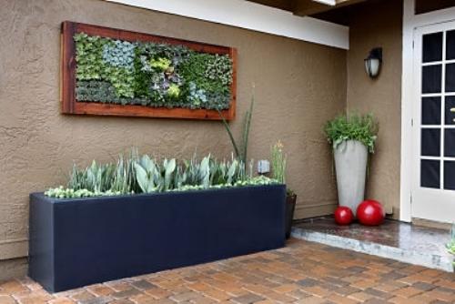 khung tranh,kích thước,treo tường,cây cảnh,cách làm khung tranh,tái chế