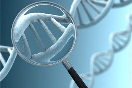 Mexico: Giải mã bộ gene loài đậu thông dụng nhất Trung Mỹ