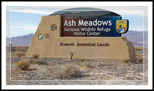 EFP-Ash Meadows Visitor Center