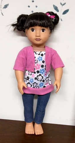 PennilessCaucasianRubbish American Doll Adventures Clothes For 18inch Dolls From Dollar General 150