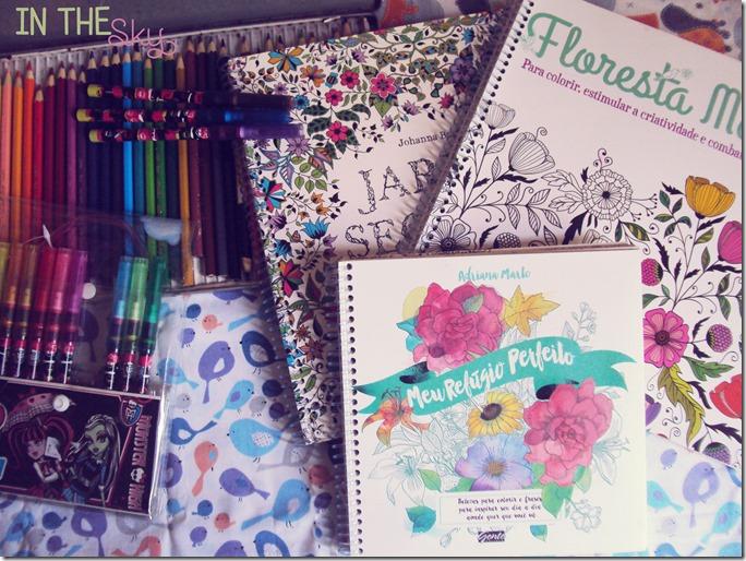 livros de colorir07