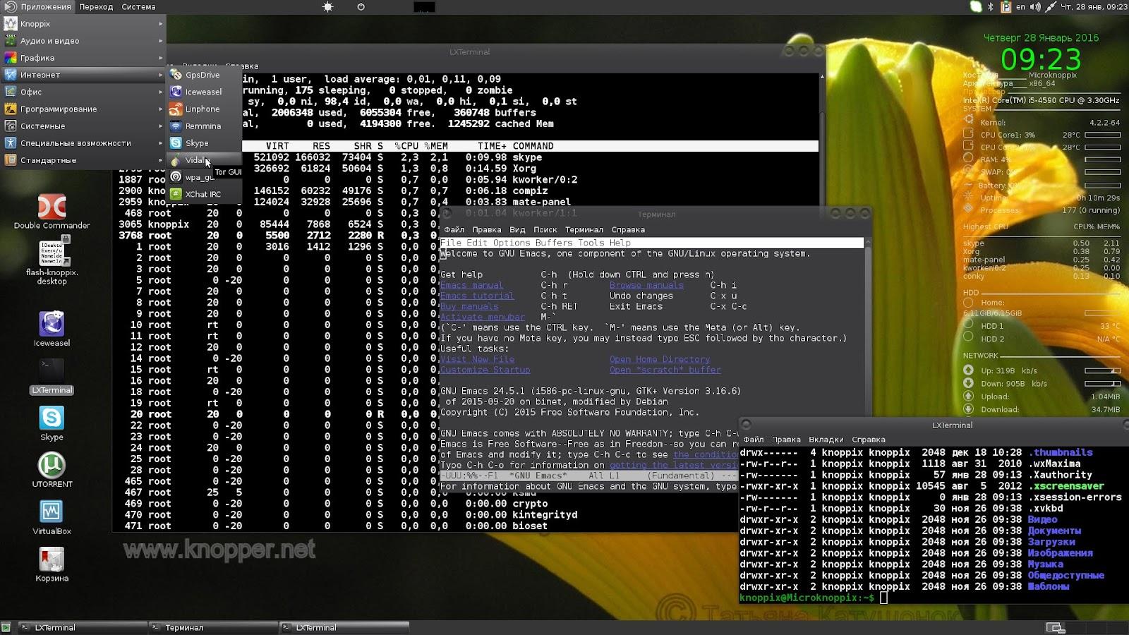Debian 7 скачать торрент