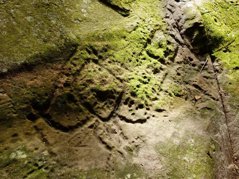 2014_0101-0105 萬山神石、萬山岩雕順訪萬頭蘭山_0701