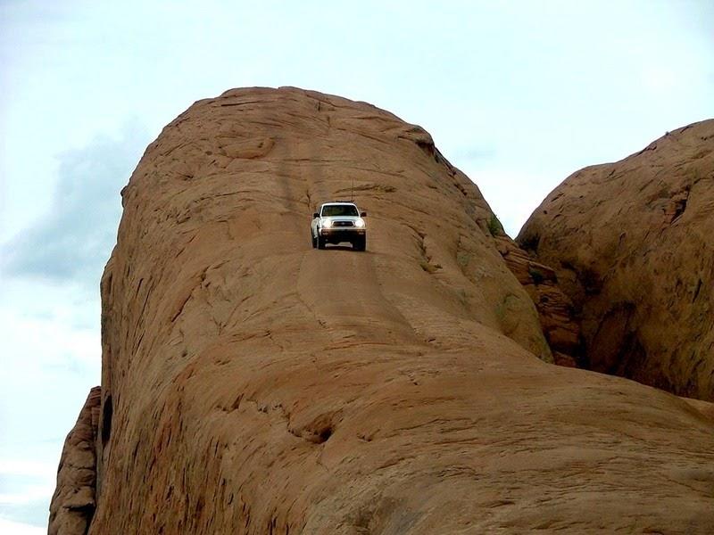 lions-back-moab-1