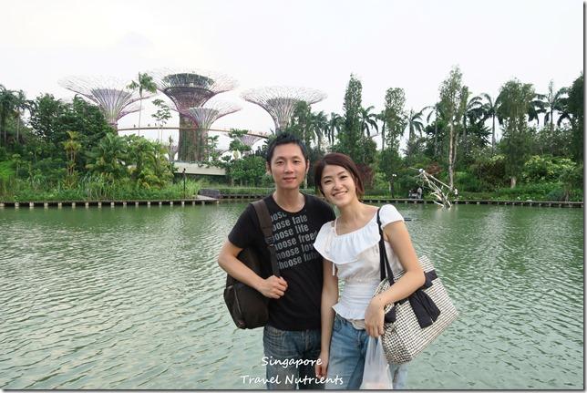 新加坡超級樹燈光秀 (6)