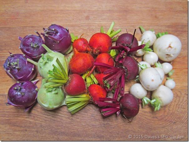 root_vegetables