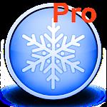 Snow cover Pro Icon
