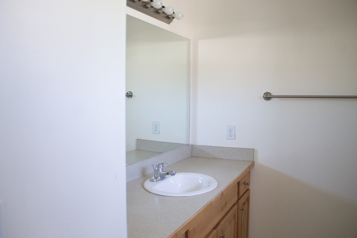 Master Bathroom Before and After (2)