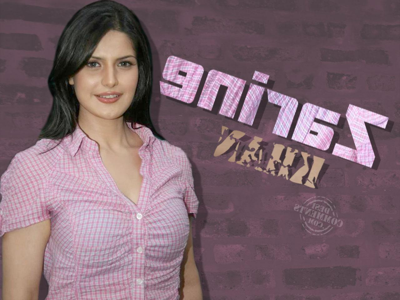 Zarine Khan In Beautiful Dress