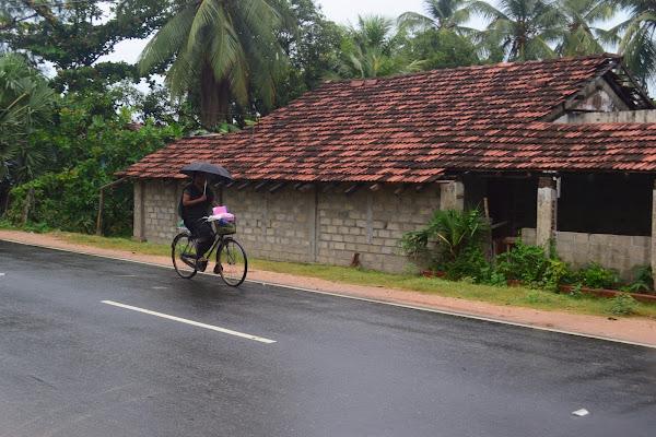 Женщина с зонтиком на велосипеде, Шри Ланка