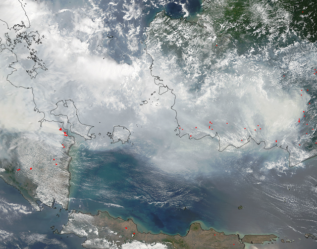 Satellite view of smoke and fires in southern Sumatra and Borneo, 5 October 2015. Photo: NASA Aqua / MODIS