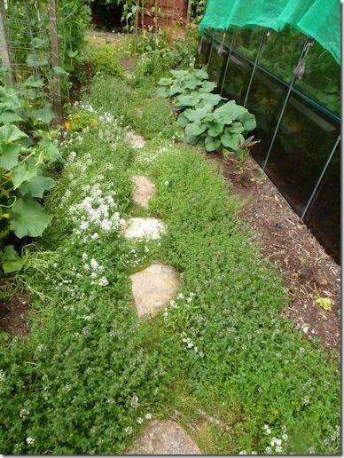 GardenPath4