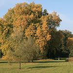 Parc de Méry-sur-Oise