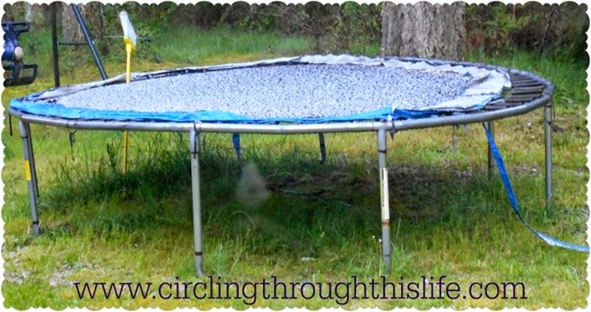 Hail covering the trampoline after a torrential downpour of rain