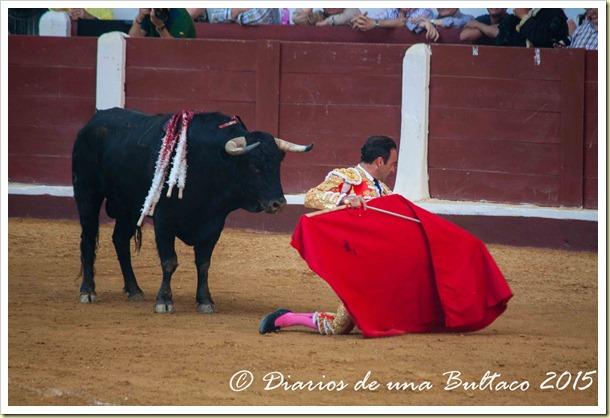 Toros Feria 2015-9815