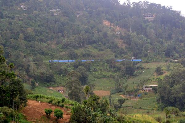 Поезд среди гор и чайных плантаций, Шри Ланка