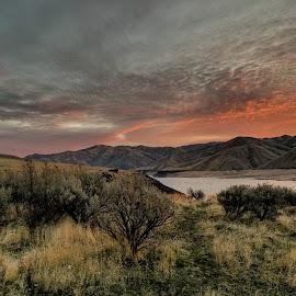 Cold sunrise by D.j. Nichols - Instagram & Mobile Android ( sunrise )
