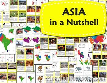 asia cover copy