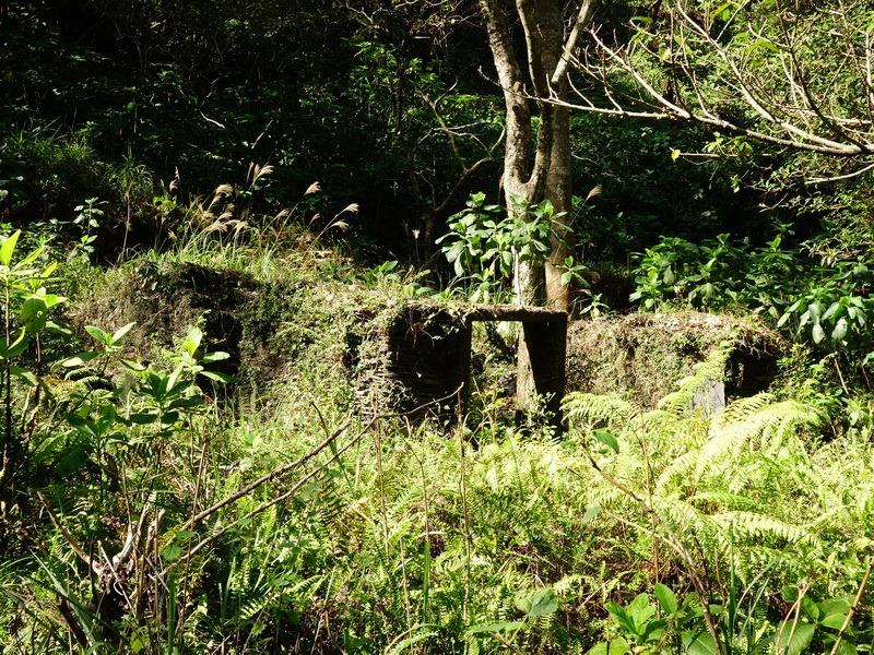2014_0101-0105 萬山神石、萬山岩雕順訪萬頭蘭山_0067