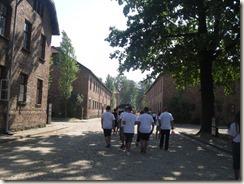 Auschwitz  Bilder des Horrors 011