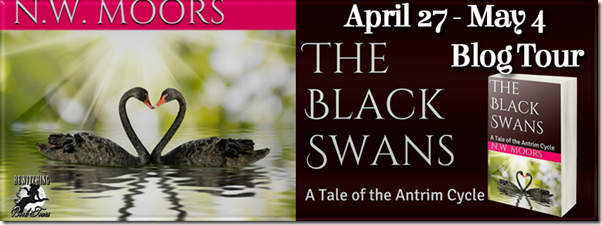 The Black Swans Banner 851 x 315
