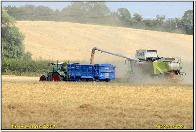 Harvester Harvesting - August