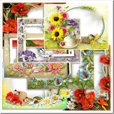 Summer sunset flowers photo frames
