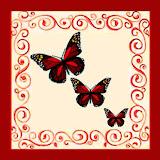 borboletas (71).jpg