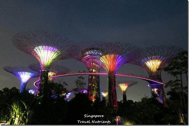 新加坡超級樹燈光秀 (30)